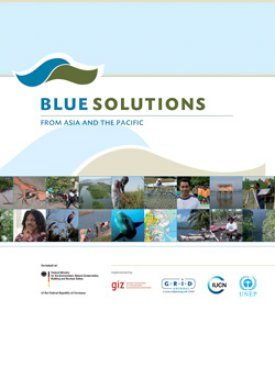 Blue Solutions from Asia and the Pacific
